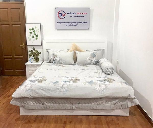 Mẫu chăn ga gối đẹp Việt Á RT_P05